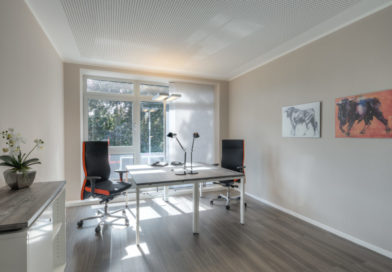 Wie lohnt es sich, einen Büroraum zu mieten?