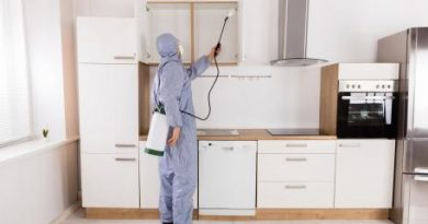 Signs It Is Time To Call a Pest Control Professional